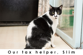 Tax Helper: Slim photo